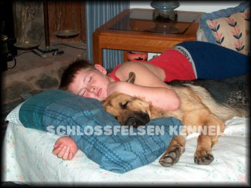 GRANDSON ROB AND HALO, 